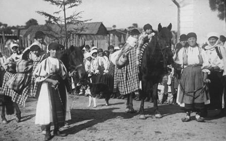 Jinari plecand  cu oile la munte (1902)