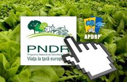 PNDR_online