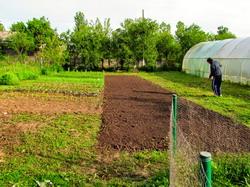 Cod_fiscal_-_Impozitare_terenuri_agricole_din_intravilan