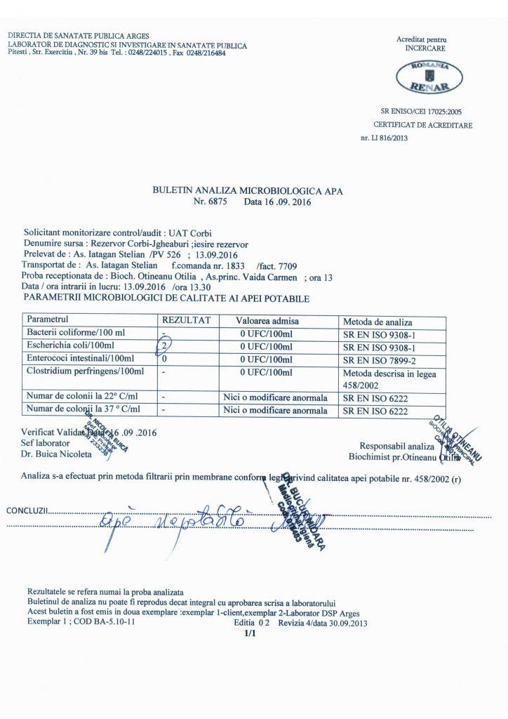 buletin-analiza-001
